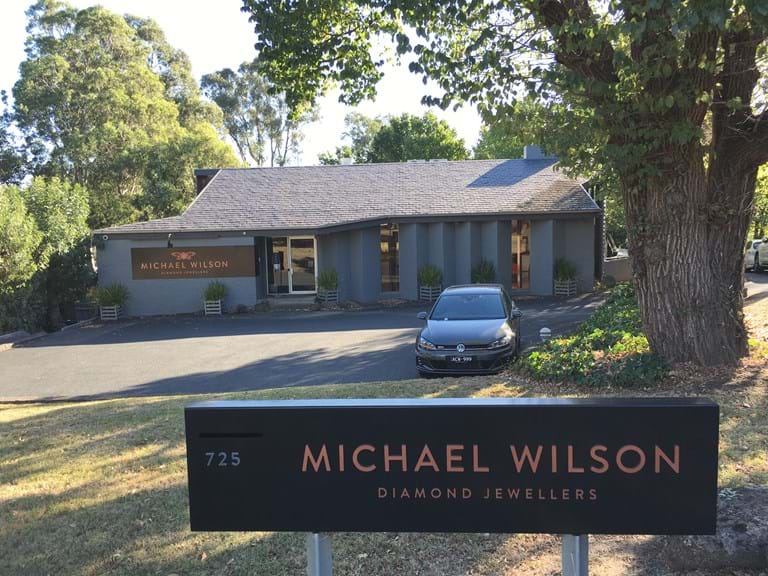 Michael Wilson Experience
